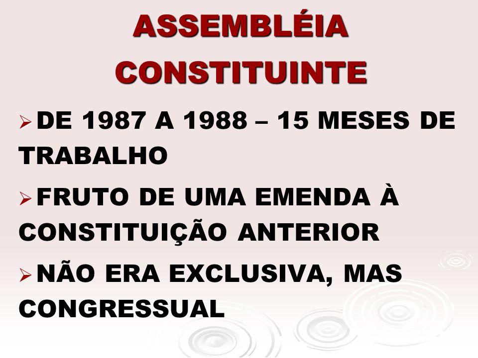 ASSEMBLÉIA CONSTITUINTE 559 CONGRESSITAS 559 CONGRESSITAS CONSTITUINTE FORMADA MAJORITARIAMENTE POR PARTIDOS DE CENTRO CONSTITUINTE FORMADA MAJORITARIAMENTE POR PARTIDOS DE CENTRO COMISSÕES TEMÁTICAS E COMISSÃO DE SISTEMATIZAÇÃO