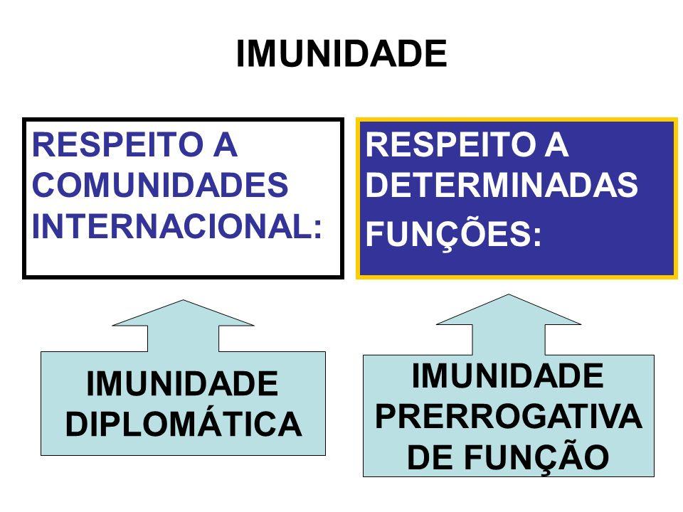 RESPEITO A COMUNIDADES INTERNACIONAL: DIPLOMÁTICA RESPEITO A DETERMINADAS FUNÇÕES: IMUNIDADE PRERROGATIVA DE FUNÇÃO