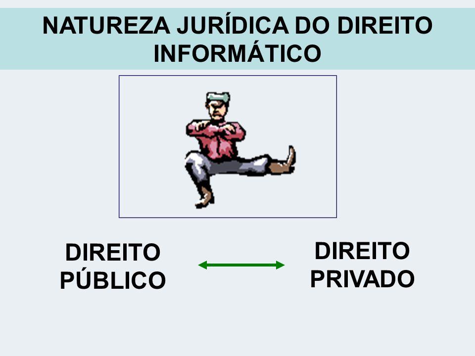 NATUREZA JURÍDICA DO DIREITO INFORMÁTICO DIREITO PÚBLICO DIREITO PRIVADO