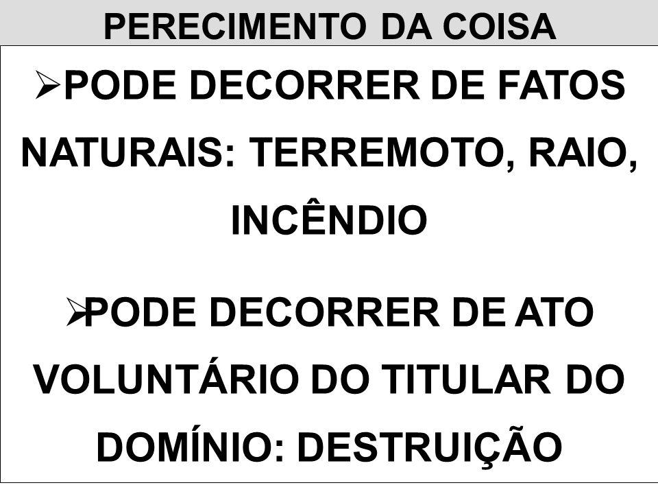PERECIMENTO DA COISA PODE DECORRER DE FATOS NATURAIS: TERREMOTO, RAIO, INCÊNDIO PODE DECORRER DE ATO VOLUNTÁRIO DO TITULAR DO DOMÍNIO: DESTRUIÇÃO