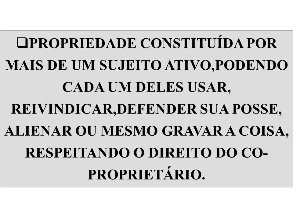 ESPÉCIES DE COMUNHÃO QUANTO À ORIGEM VOLUNTÁRIA OU CONVENCIONAL; EVENTUAL, ACIDENTAL OU INCIDENTE;