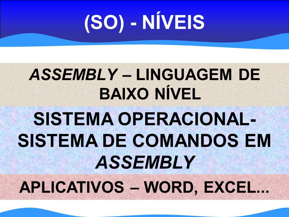 (SO) - NÍVEIS ASSEMBLY – LINGUAGEM DE BAIXO NÍVEL APLICATIVOS – WORD, EXCEL...