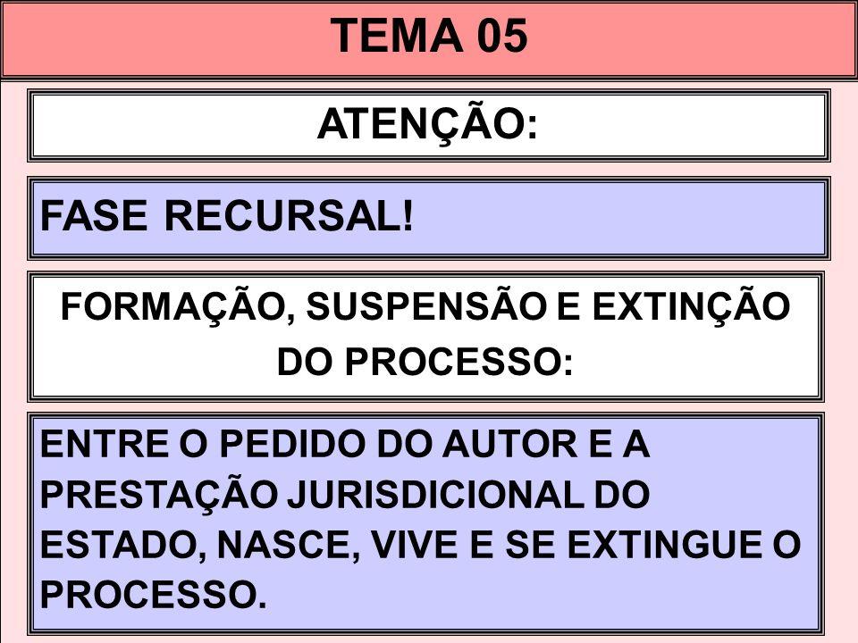 TEMA 05 ATENÇÃO: FASE RECURSAL.