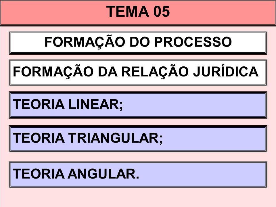 TEMA 05 FORMAÇÃO DO PROCESSO FORMAÇÃO DA RELAÇÃO JURÍDICA TEORIA LINEAR; TEORIA TRIANGULAR; TEORIA ANGULAR.