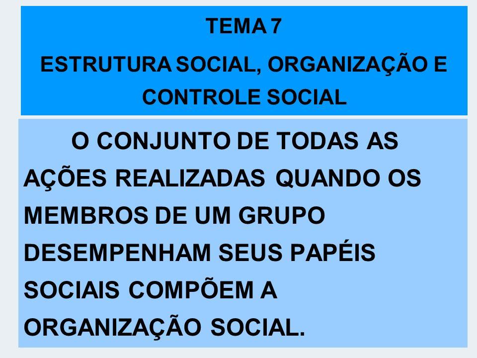 O CONJUNTO DE TODAS AS AÇÕES REALIZADAS QUANDO OS MEMBROS DE UM GRUPO DESEMPENHAM SEUS PAPÉIS SOCIAIS COMPÕEM A ORGANIZAÇÃO SOCIAL. TEMA 7 ESTRUTURA S
