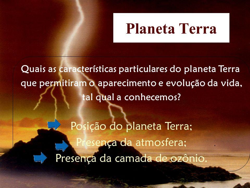 Planeta Terra Quais as características particulares do planeta Terra que permitiram o aparecimento e evolução da vida, tal qual a conhecemos? Posição