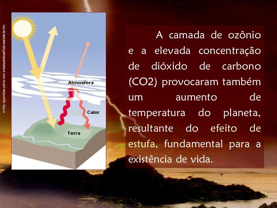 A camada de ozônio e a elevada concentração de dióxido de carbono (CO2) provocaram também um aumento de temperatura do planeta, resultante do efeito d