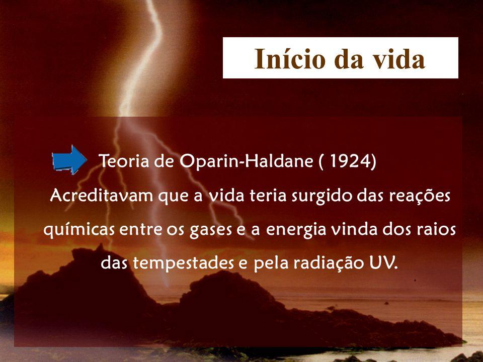 Início da vida Teoria de Oparin-Haldane ( 1924) Acreditavam que a vida teria surgido das reações químicas entre os gases e a energia vinda dos raios d