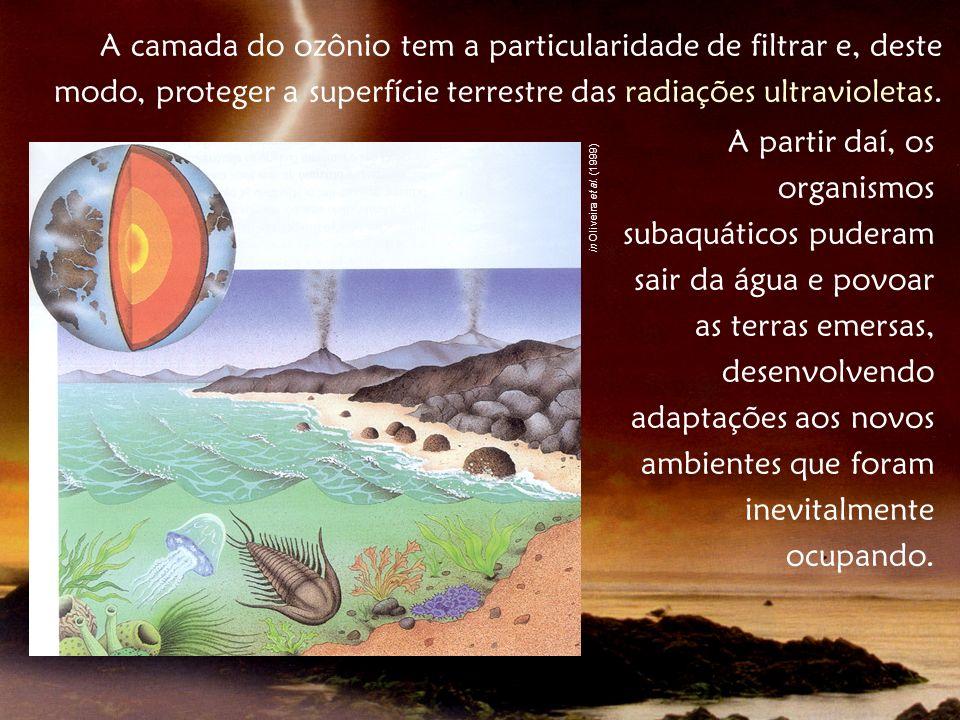 A camada do ozônio tem a particularidade de filtrar e, deste modo, proteger a superfície terrestre das radiações ultravioletas. A partir daí, os organ