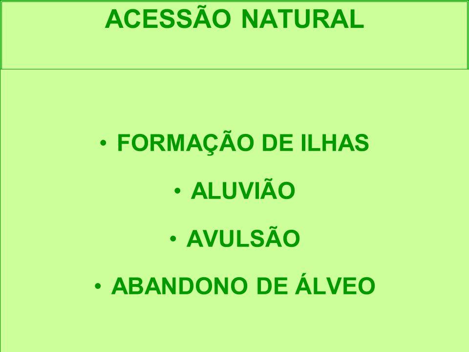 ACESSÃO NATURAL FORMAÇÃO DE ILHAS ALUVIÃO AVULSÃO ABANDONO DE ÁLVEO