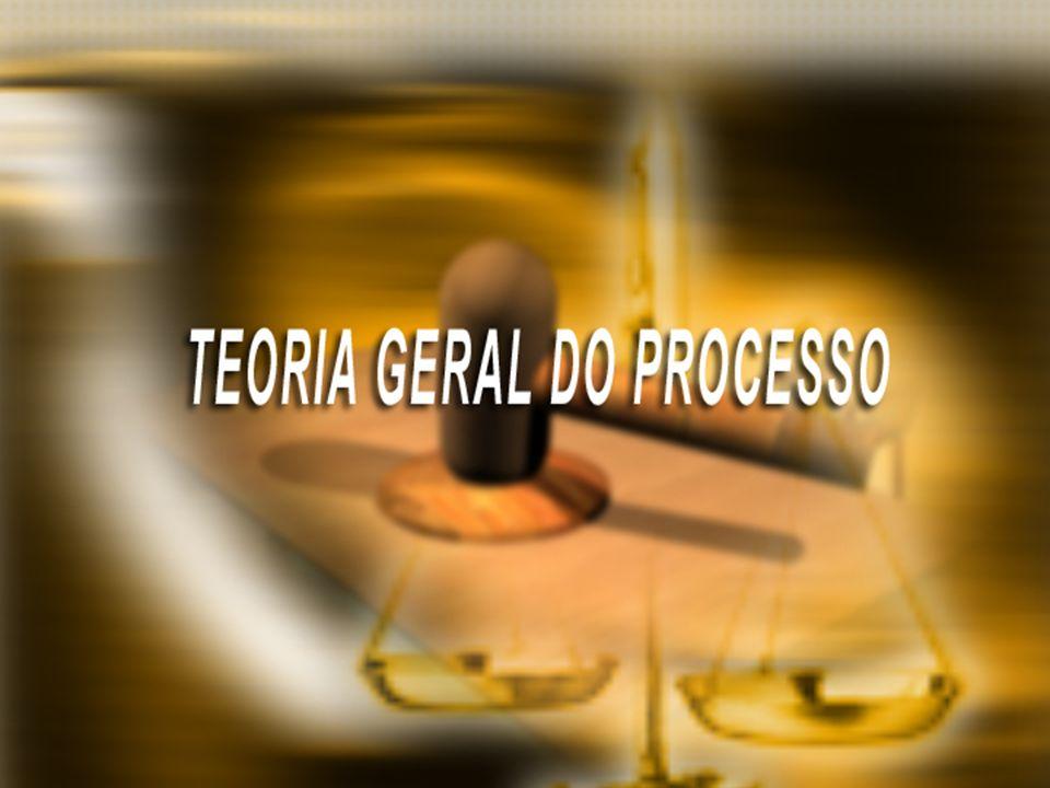 TEORIA GERAL DO PROCESSO - TGP PROFESSORA MARIA DO CARMO COTA AULA 04, P.