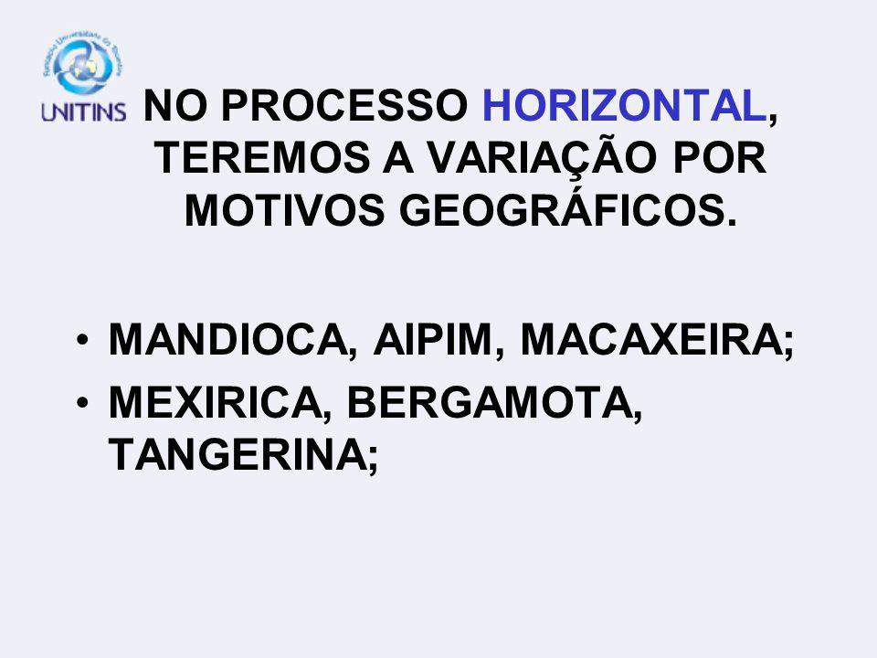 NO PROCESSO HORIZONTAL, TEREMOS A VARIAÇÃO POR MOTIVOS GEOGRÁFICOS. MANDIOCA, AIPIM, MACAXEIRA; MEXIRICA, BERGAMOTA, TANGERINA;