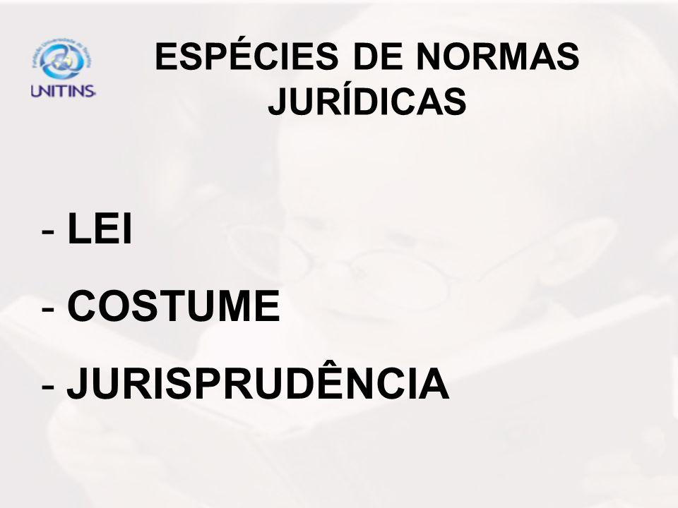 ESPÉCIES DE NORMAS JURÍDICAS -LEI -COSTUME -JURISPRUDÊNCIA