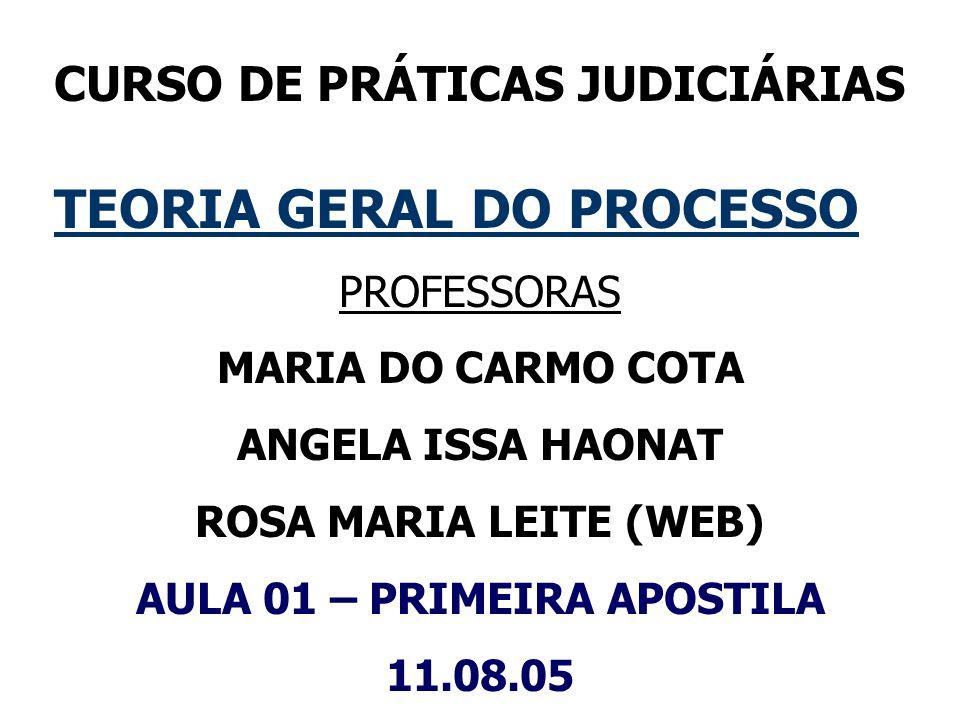 CURSO DE PRÁTICAS JUDICIÁRIAS TEORIA GERAL DO PROCESSO PROFESSORAS MARIA DO CARMO COTA ANGELA ISSA HAONAT ROSA MARIA LEITE (WEB) AULA 01 – PRIMEIRA AP