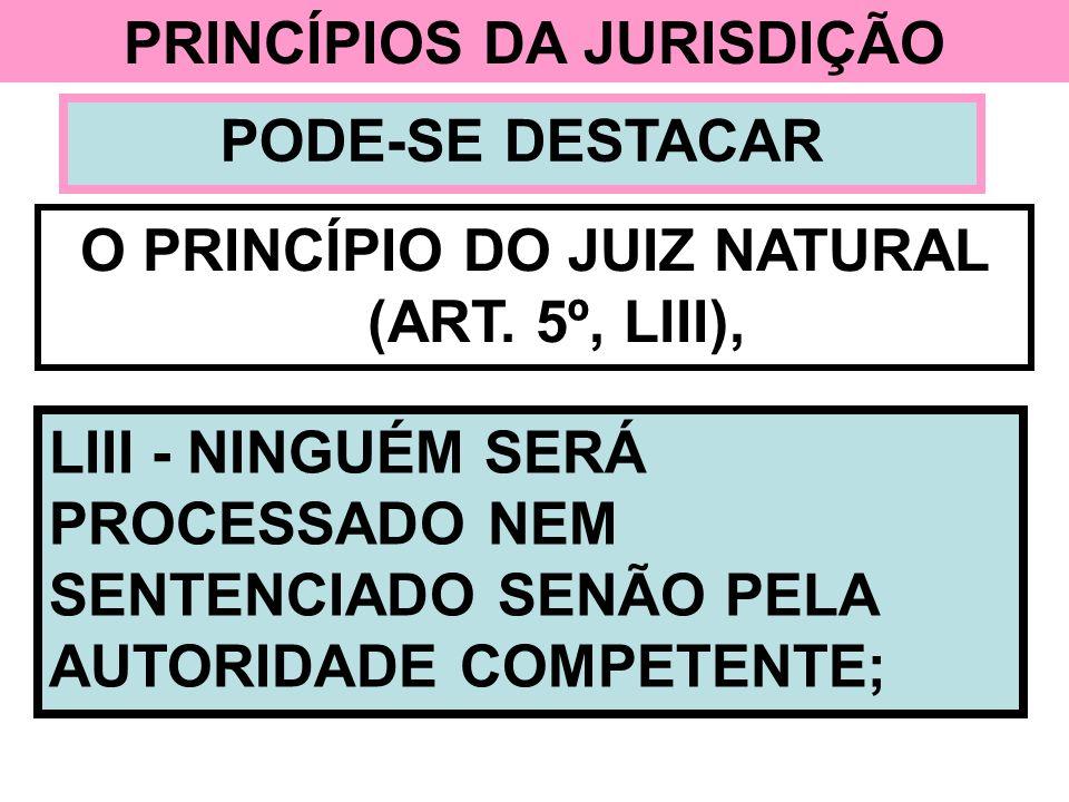 PRINCÍPIOS DA JURISDIÇÃO PODE-SE DESTACAR O PRINCÍPIO DO JUIZ NATURAL (ART. 5º, LIII), LIII - NINGUÉM SERÁ PROCESSADO NEM SENTENCIADO SENÃO PELA AUTOR