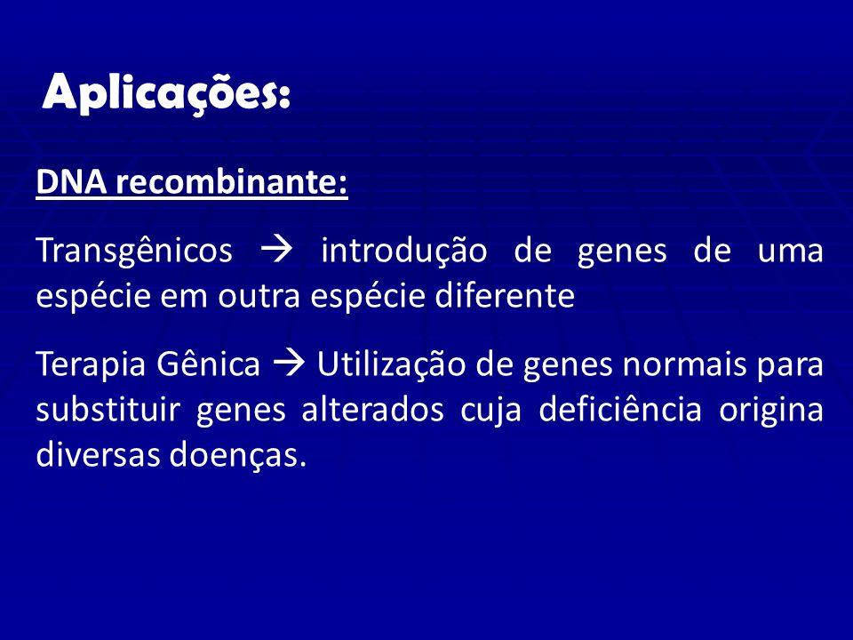 Aplicações: DNA recombinante: Transgênicos introdução de genes de uma espécie em outra espécie diferente Terapia Gênica Utilização de genes normais para substituir genes alterados cuja deficiência origina diversas doenças.