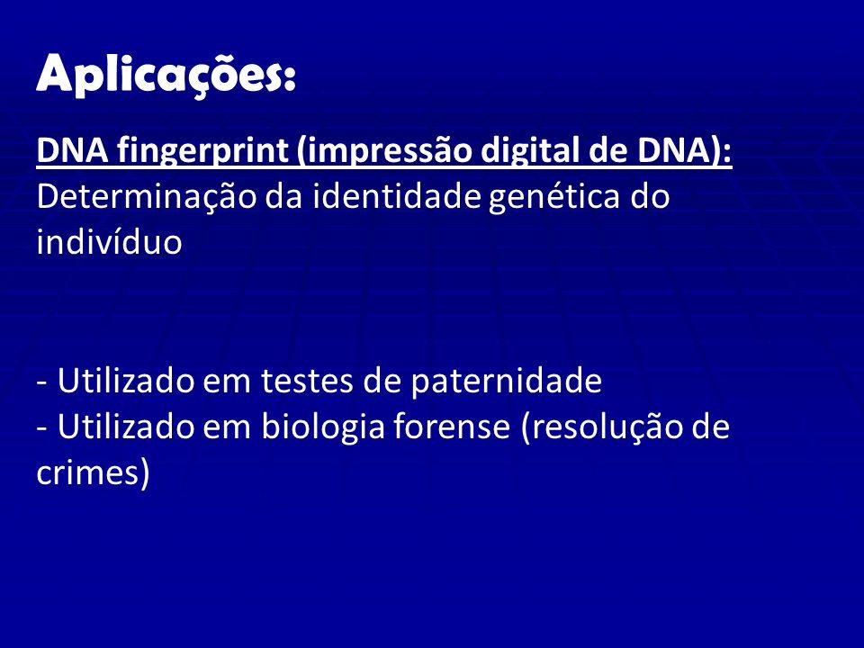 Aplicações: DNA fingerprint (impressão digital de DNA): Determinação da identidade genética do indivíduo - Utilizado em testes de paternidade - Utilizado em biologia forense (resolução de crimes)