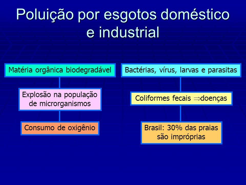 Matéria orgânica biodegradável Explosão na população de microrganismos Consumo de oxigênio Bactérias, vírus, larvas e parasitas Coliformes fecais doenças Brasil: 30% das praias são impróprias