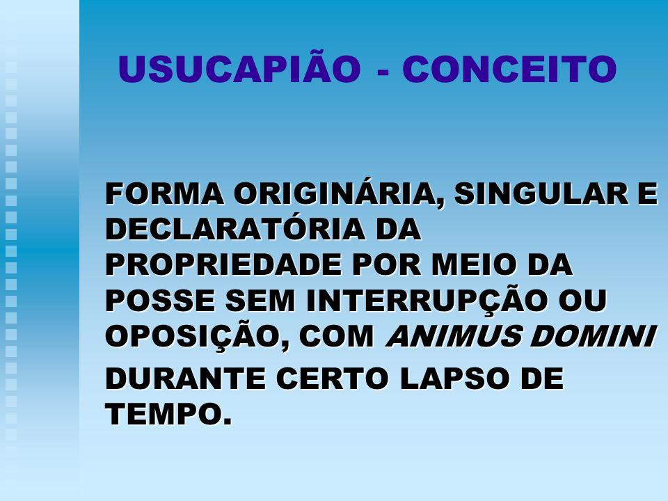 USUCAPIÃO - CONCEITO FORMA ORIGINÁRIA, SINGULAR E DECLARATÓRIA DA PROPRIEDADE POR MEIO DA POSSE SEM INTERRUPÇÃO OU OPOSIÇÃO, COM ANIMUS DOMINI DURANTE