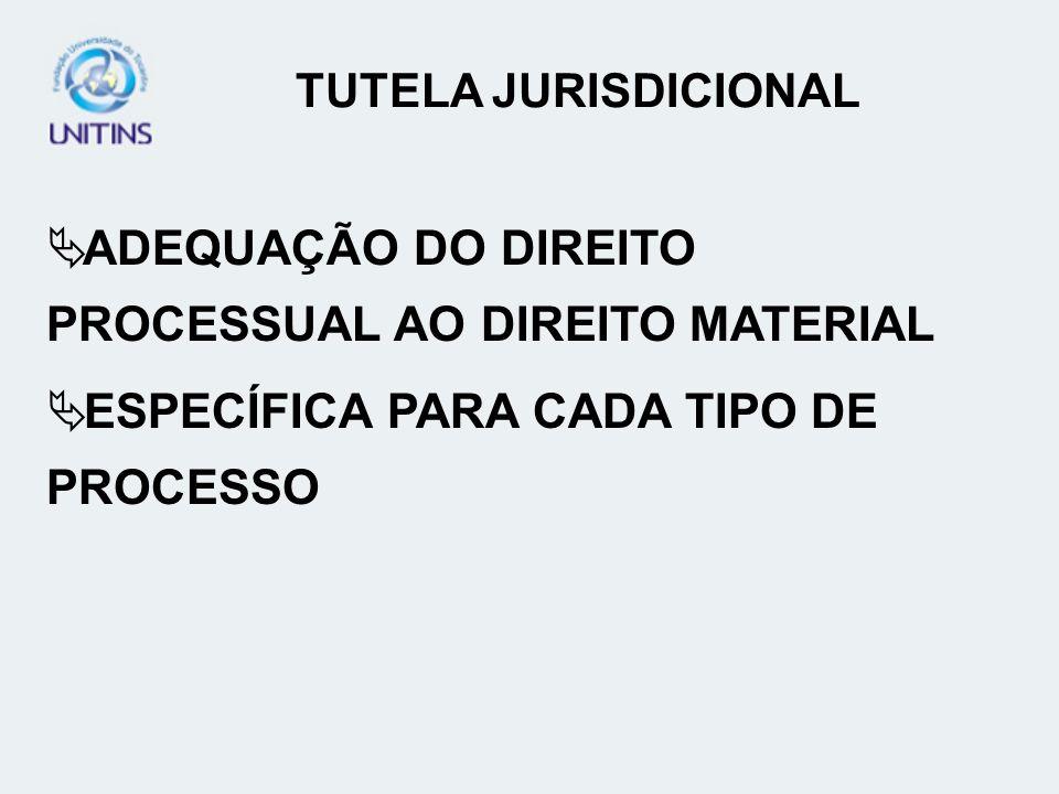 ADEQUAÇÃO DO DIREITO PROCESSUAL AO DIREITO MATERIAL ESPECÍFICA PARA CADA TIPO DE PROCESSO TUTELA JURISDICIONAL