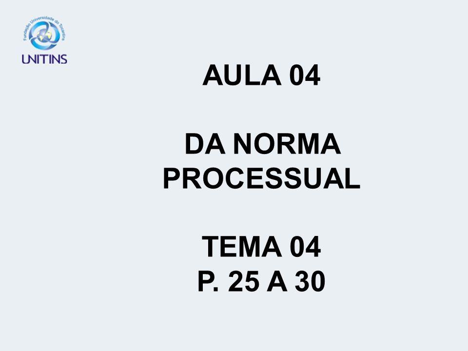 AULA 04 DA NORMA PROCESSUAL TEMA 04 P. 25 A 30