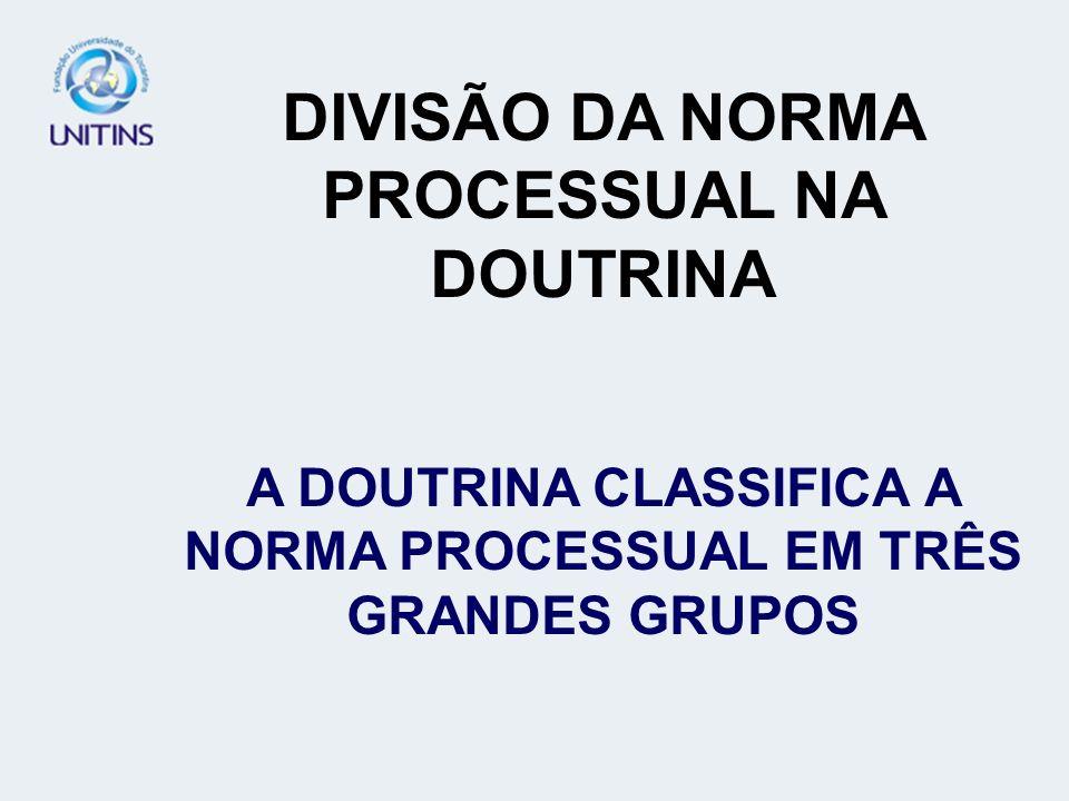DIVISÃO DA NORMA PROCESSUAL NA DOUTRINA A DOUTRINA CLASSIFICA A NORMA PROCESSUAL EM TRÊS GRANDES GRUPOS