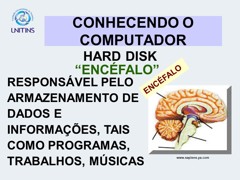 CONHECENDO O COMPUTADOR HARD DISK ENCÉFALO RESPONSÁVEL PELO ARMAZENAMENTO DE DADOS E INFORMAÇÕES, TAIS COMO PROGRAMAS, TRABALHOS, MÚSICAS www.sapiens.