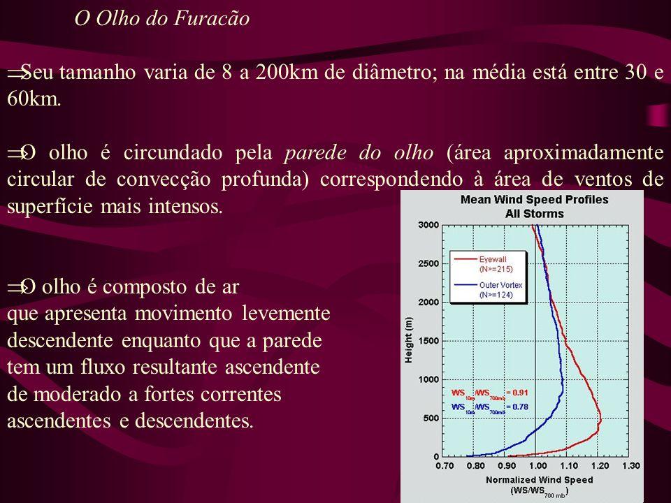 O Olho do Furacão Seu tamanho varia de 8 a 200km de diâmetro; na média está entre 30 e 60km. O olho é circundado pela parede do olho (área aproximadam