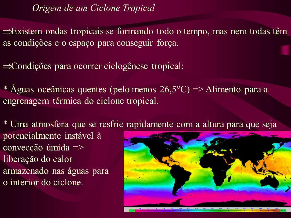Origem de um Ciclone Tropical Condições para ocorrer ciclogênese tropical: * Camadas relativamente úmidas perto da média troposfera (5km).