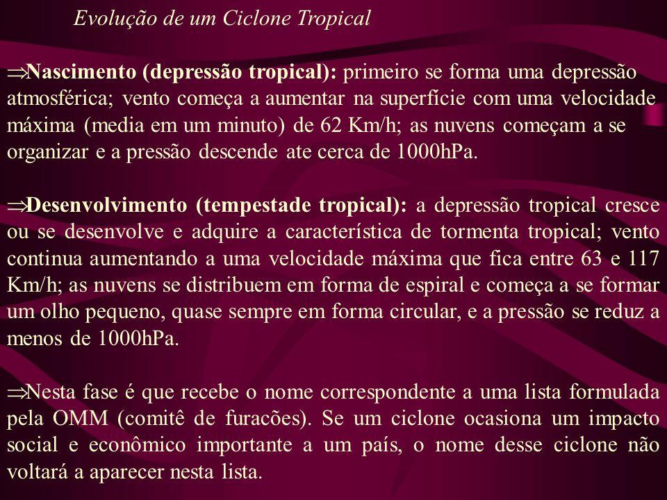 Evolução de um Ciclone Tropical Nascimento (depressão tropical): primeiro se forma uma depressão atmosférica; vento começa a aumentar na superfície co