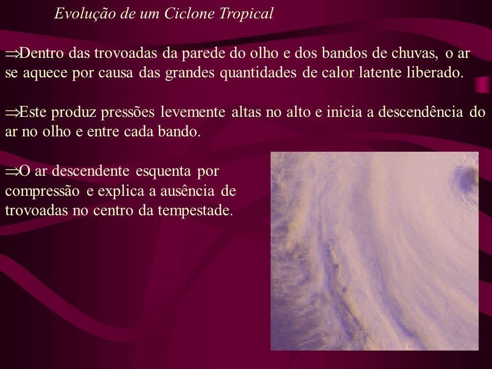 Evolução de um Ciclone Tropical Dissipação (fase final): Furacões diminuem rapidamente quando eles trajetam sobre águas frias e perdem a sua fonte de calor.
