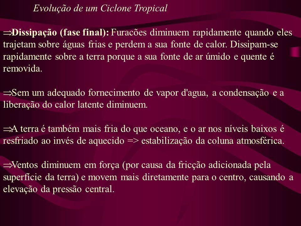 Evolução de um Ciclone Tropical Dissipação (fase final): Furacões diminuem rapidamente quando eles trajetam sobre águas frias e perdem a sua fonte de