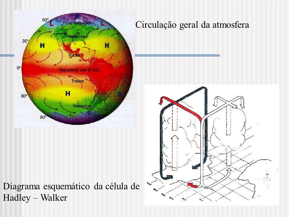 Circulação geral da atmosfera Diagrama esquemático da célula de Hadley – Walker