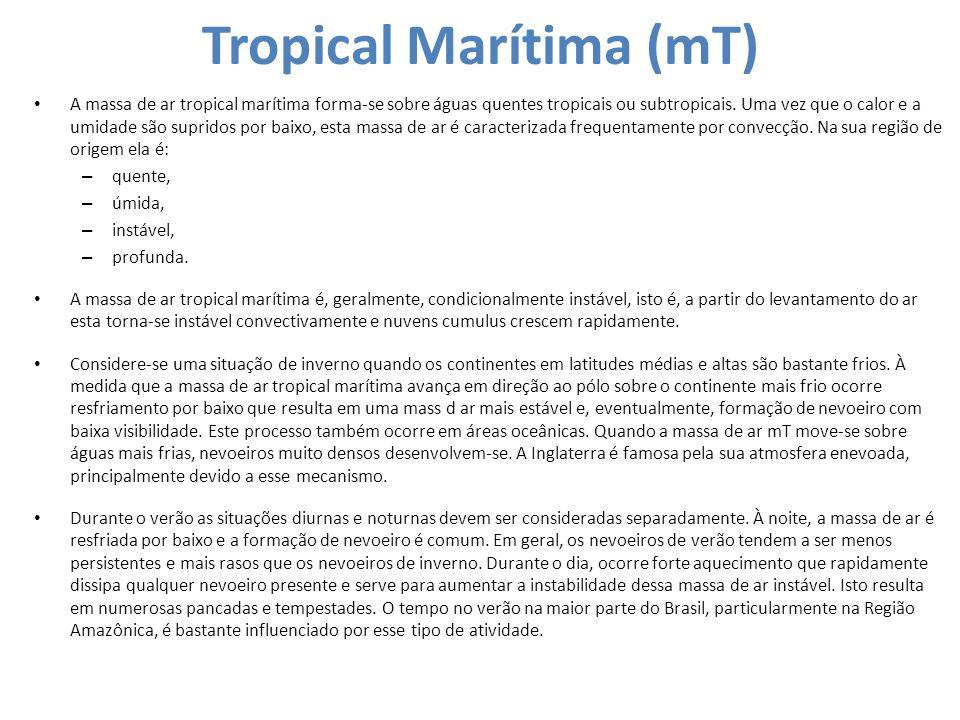 Tropical Marítima (mT) A massa de ar tropical marítima forma-se sobre águas quentes tropicais ou subtropicais. Uma vez que o calor e a umidade são sup