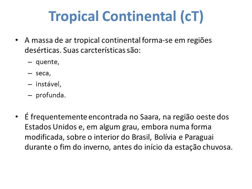 Tropical Continental (cT) A massa de ar tropical continental forma-se em regiões desérticas. Suas carcterísticas são: – quente, – seca, – instável, –