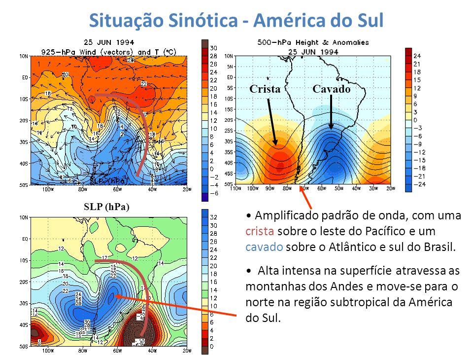 Situação Sinótica - América do Sul SLP (hPa) Amplificado padrão de onda, com uma crista sobre o leste do Pacífico e um cavado sobre o Atlântico e sul