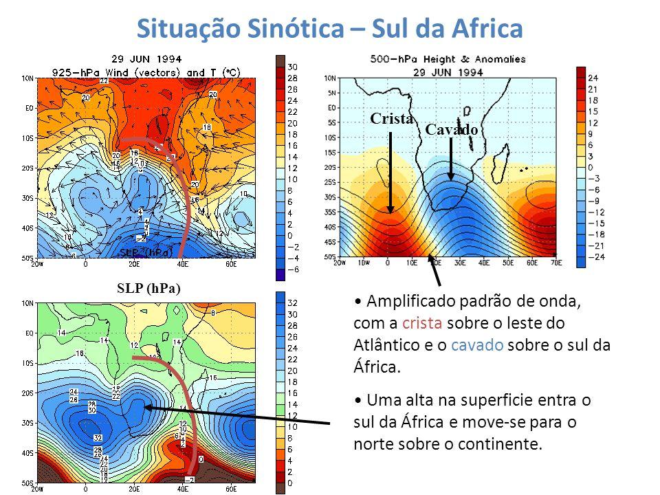 Situação Sinótica – Sul da Africa SLP (hPa) Crista Cavado Amplificado padrão de onda, com a crista sobre o leste do Atlântico e o cavado sobre o sul d