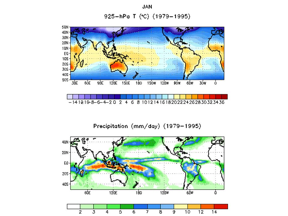 925-hPa Temperature and Precipitation Animations