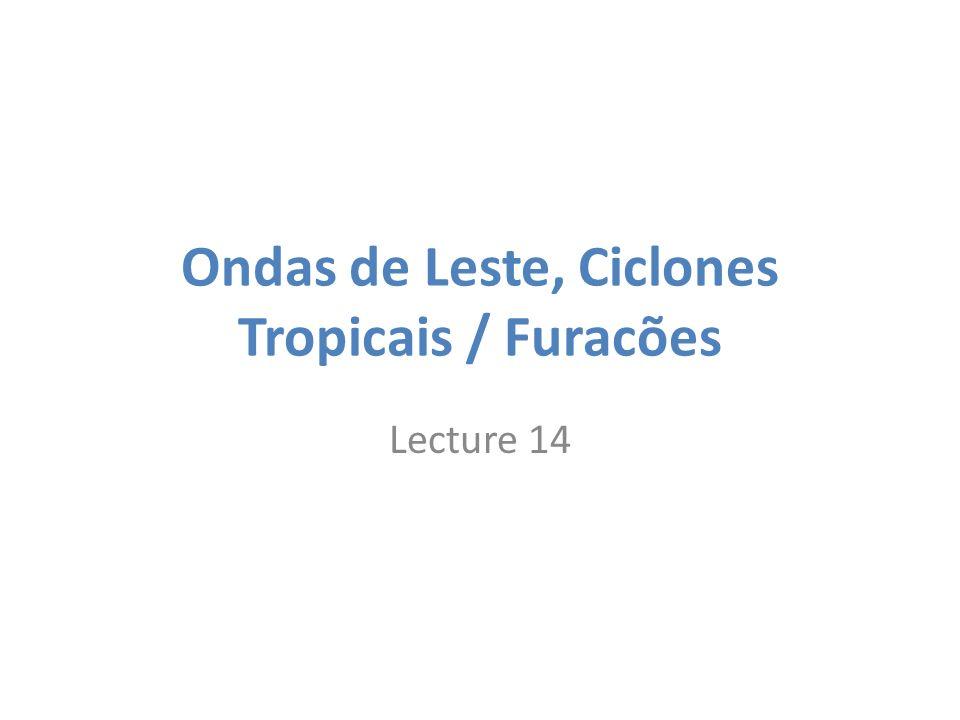 Ondas de Leste, Ciclones Tropicais / Furacões Lecture 14