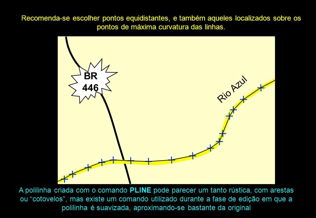 Recomenda-se escolher pontos equidistantes, e também aqueles localizados sobre os pontos de máxima curvatura das linhas. Rio Azul BR 446 A polilinha c