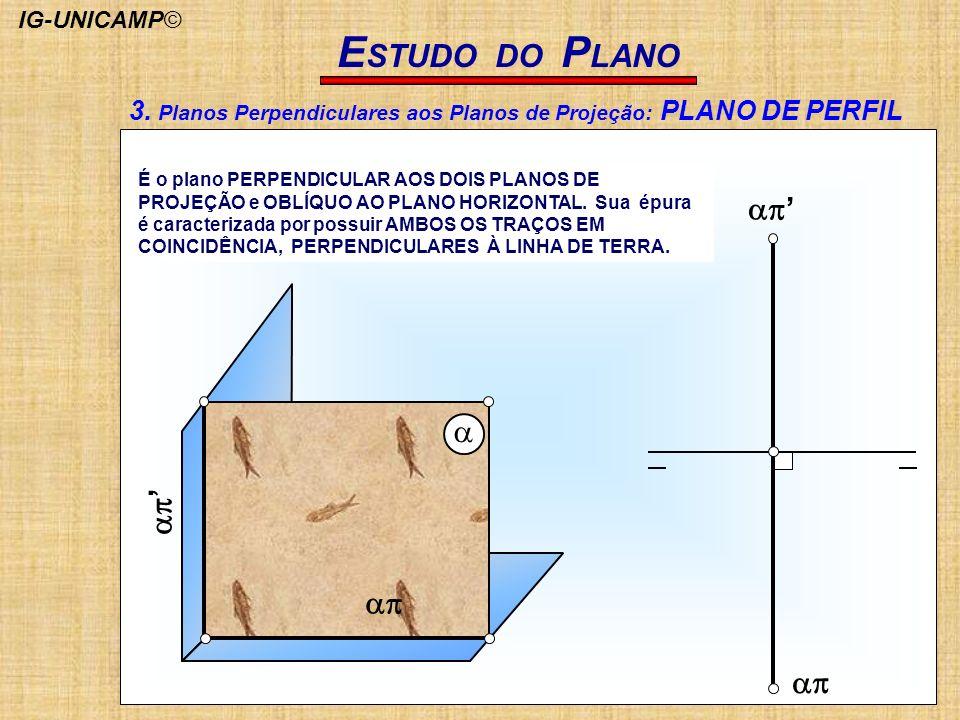 E STUDO DO P LANO É o plano PERPENDICULAR AOS DOIS PLANOS DE PROJEÇÃO e OBLÍQUO AO PLANO HORIZONTAL. Sua épura é caracterizada por possuir AMBOS OS TR