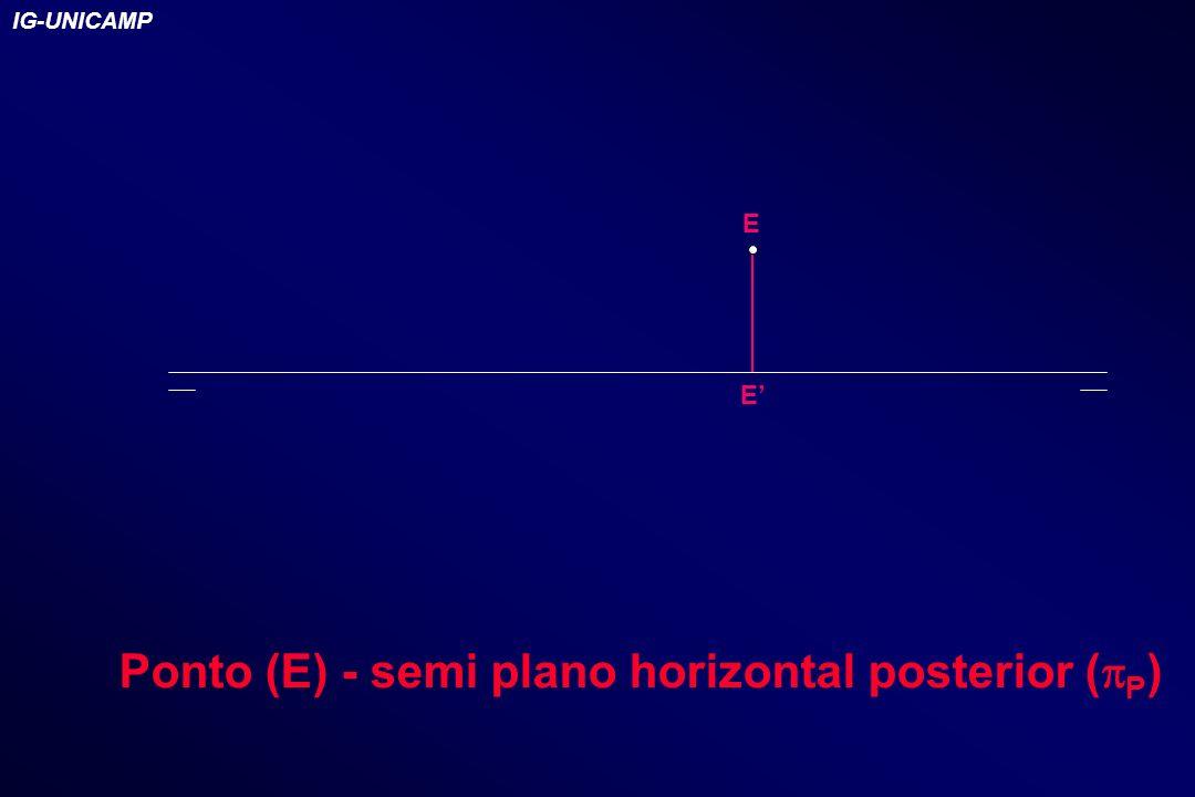 E E Ponto (E) - semi plano horizontal posterior ( P ) IG-UNICAMP
