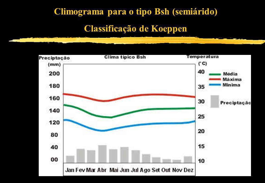 Climograma para o tipo Bsh (semiárido) Classificação de Koeppen