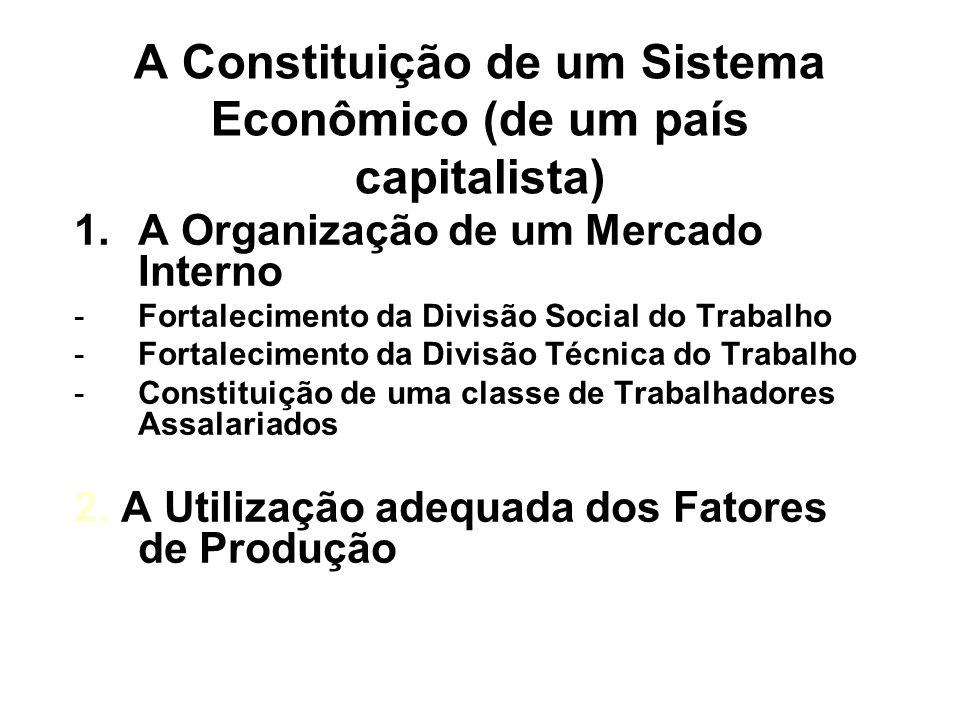 A Constituição de um Sistema Econômico (de um país capitalista) 1.A Organização de um Mercado Interno -Fortalecimento da Divisão Social do Trabalho -F