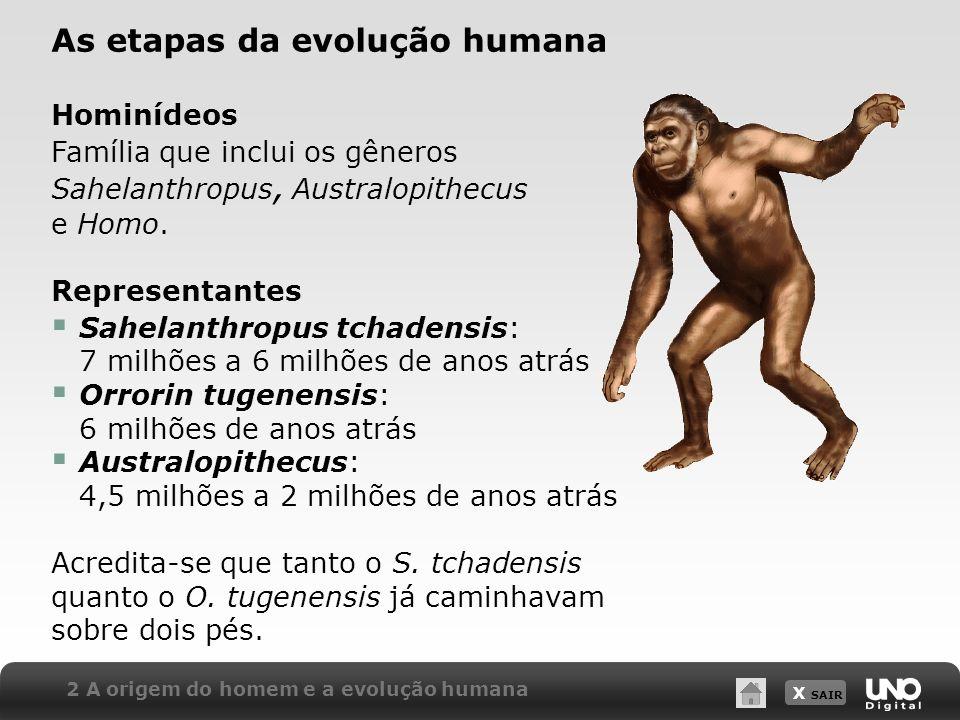 X SAIR 2 A origem do homem e a evolução humana As etapas da evolução humana Hominídeos Família que inclui os gêneros Sahelanthropus, Australopithecus
