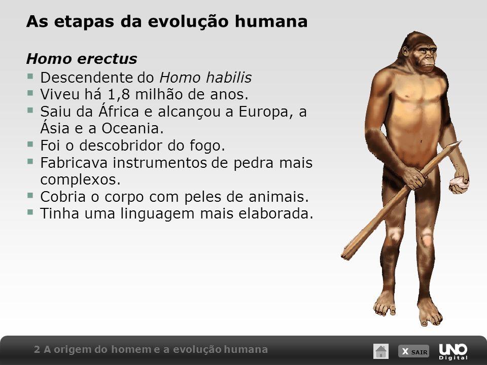 X SAIR 2 A origem do homem e a evolução humana As etapas da evolução humana Homo erectus Descendente do Homo habilis Viveu há 1,8 milhão de anos. Saiu