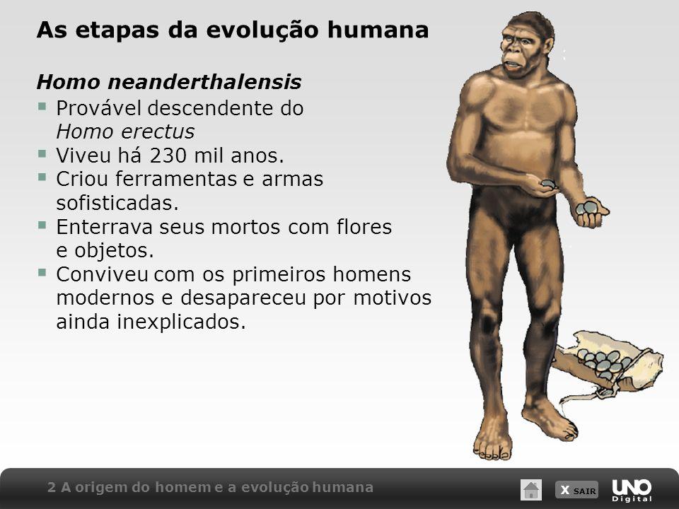 X SAIR 2 A origem do homem e a evolução humana As etapas da evolução humana Homo neanderthalensis Provável descendente do Homo erectus Viveu há 230 mi