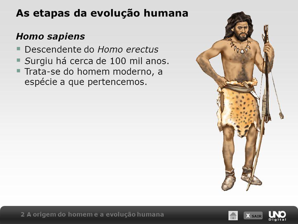 X SAIR 2 A origem do homem e a evolução humana As etapas da evolução humana Homo sapiens Descendente do Homo erectus Surgiu há cerca de 100 mil anos.