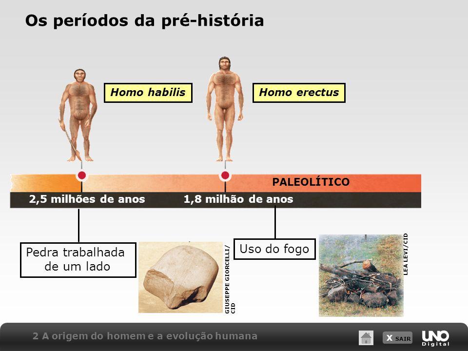 X SAIR PALEOLÍTICO Homo habilis 2 A origem do homem e a evolução humana Os períodos da pré-história Homo erectus 2,5 milhões de anos1,8 milhão de anos