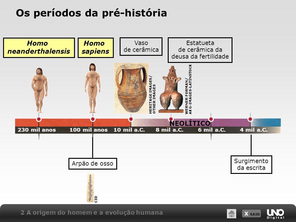 X SAIR NEOLÍTICO 2 A origem do homem e a evolução humana Os períodos da pré-história Homo neanderthalensis Homo sapiens 230 mil anos100 mil anos10 mil